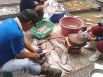Frische Fische des unbekannten Mannverkaufs im Markt von Phayao, Thailand Lizenzfreie Stockfotos