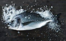 Frische Fische dorado auf schwarzem Brett mit Salz Stockbild