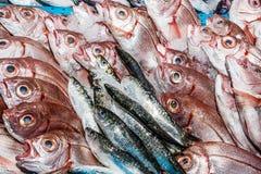 Frische Fische an einem Fischshop Stockfotos