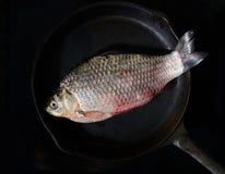 Frische Fische in einer Bratpfanne auf einem schwarzen Hintergrund Stockbilder