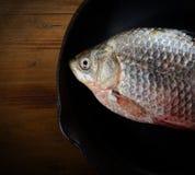 Frische Fische in einer Bratpfanne auf einem schwarzen Hintergrund Stockfoto