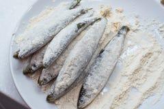 Frische Fische in einer Platte mit Mehl Lizenzfreies Stockfoto