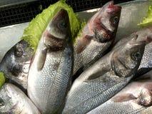 Frische Fische heringe Fische werden schön auf einem Metallteller ausgebreitet stockfotos