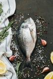 Frische Fische mit Salz, Pfeffer, aromatischen Kräutern und Gemüse über Weinlesedunkelheitshintergrund stockbild