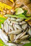 Frische Fische, Nahrung, siamesische Nahrung, Fisch, vorbereitende Nahrung, Natu Stockfotos