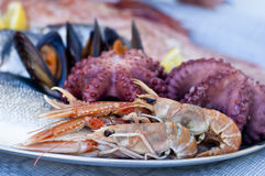 Frische Fische, Schalentiere und Meeresfrüchte Stockbild