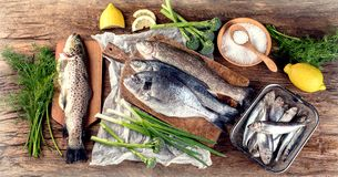 Frische Fische und Bestandteile für das Kochen Stockfoto