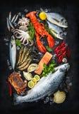 Frische Fische und essbare Meerestiere Lizenzfreie Stockfotos