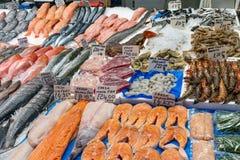Frische Fische und Krebstiere für Verkauf stockbild