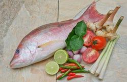 Frische Fische und thailändische Kräuter Lizenzfreie Stockbilder