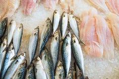 Frische Fische und Verkleidung auf Eis stockfotos