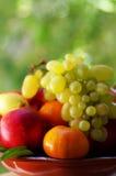 Frische Früchte, Birnen, Pfirsiche, Tangerine und Trauben Lizenzfreies Stockbild