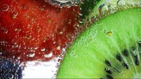 Frische Früchte schwimmen im Wasser stock video
