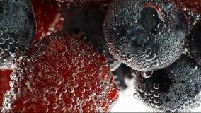 Frische Früchte schwimmen im Wasser stock footage