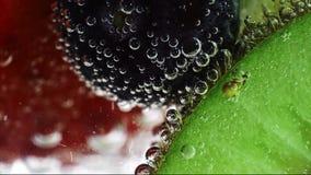 Frische Früchte schwimmen im Wasser stock video footage