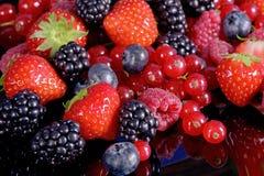 Frische Früchte und Beeren lizenzfreie stockfotos
