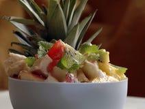 Frische Früchte und Joghurtsalat Stockfotos