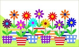 Frische Frühlings-Blumen Lizenzfreie Stockfotos