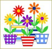 Frische Frühlings-Blumen Stockfoto