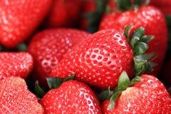 Frische Früchte - saftige Erdbeeren Lizenzfreies Stockbild