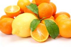 Frische Frucht Lizenzfreie Stockbilder