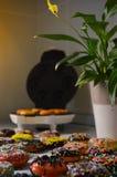 Frische gebackene amerikanische Schaumgummiringe stockbild