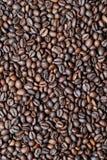 Frische gebratene Kaffeebohnen Lizenzfreies Stockfoto