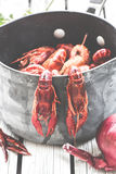 Frische gedämpfte Panzerkrebse auf dem weißen hölzernen Hintergrund Rustikale Art Abdeckung für die Zeitschrift Meeresfrüchtemenü stockbild
