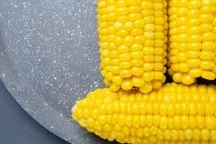 Frische gekochte gelbe Maiskolben liegen auf einem grauen Teller stockfotografie