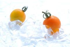 Frische gelbe Tomate auf Eis Stockfoto