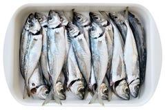 Frische gesäuberte Fische Stockfoto