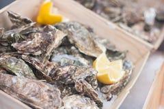 Frische geschlossene Austern mit Zitronen im Straßenmarkt stockbilder