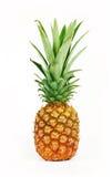 Frische geschmackvolle Ananas Stockbilder