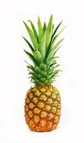 Frische geschmackvolle Ananas Lizenzfreies Stockbild