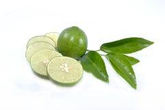 Frische geschnittene grüne Zitrone Lizenzfreie Stockfotos