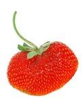 Frische getrennte Erdbeere (Inneres geformt) Stockbild