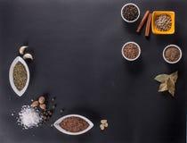 Frische Gewürze und Kräuter zerstreuten auf dunklen Hintergrund Natürliche und Biobestandteile für das Kochen des Kopienraumes fü lizenzfreies stockbild