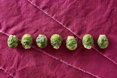 Frische gewaschene organische Rosenkohl-Brassica Oleracea var gemm lizenzfreies stockfoto