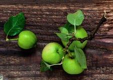 Frische grüne Äpfel, Draufsicht lizenzfreie stockfotos