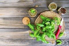 Frische grüne Basilikumblätter Stockbild