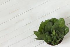 Frische grüne Blätter des Spinats in einer Schüssel auf einem weißen hölzernen backgr Lizenzfreie Stockfotos