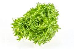 Frische grüne Eisbergsalatblätter Lizenzfreie Stockbilder