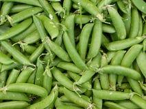 Frische grüne Erbsen Lizenzfreie Stockbilder