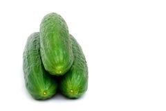 Frische grüne Gurke Lizenzfreie Stockfotos