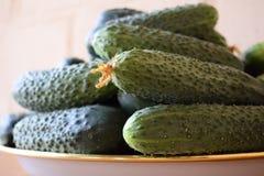 Frische gr?ne Gurken auf einer Platte Vegetarische Nahrung Gurke enth?lt Vitamine B, A stockfoto