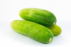 Frische grüne Gurken auf Weiß Lizenzfreie Stockbilder