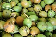 Frische grüne Kokosnüsse Stockfoto