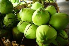 Frische grüne Kokosnussfrucht stockfotografie