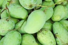 Frische grüne Mangofrüchte Stockfotografie