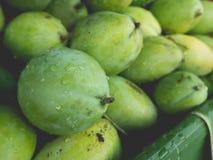 Frische grüne Mangofrüchte Stockbilder